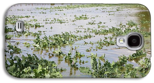 Flooded Crops Galaxy S4 Case by Ashley Cooper