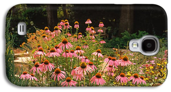 Garden Scene Galaxy S4 Cases - Flowers In A Garden, California, Usa Galaxy S4 Case by Panoramic Images