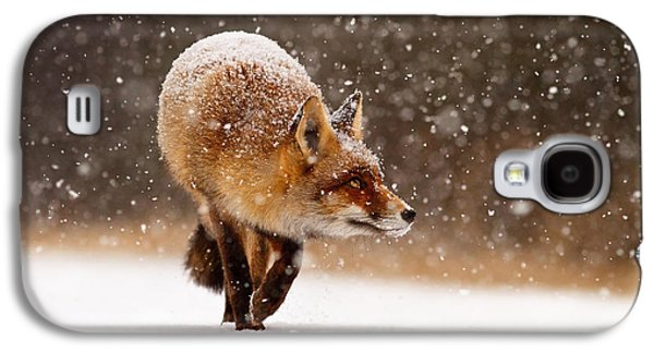 Red Fox Galaxy S4 Cases - Fox First Snow Galaxy S4 Case by Roeselien Raimond