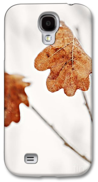 Nature Abstract Galaxy S4 Cases - Frozen Leaves Galaxy S4 Case by Dan Radi