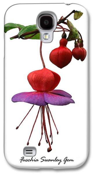 Fushia Galaxy S4 Cases - Fushia Swanley Gem Galaxy S4 Case by Archie Young