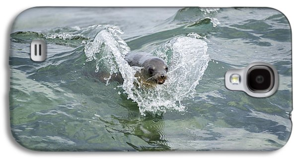 Galapagos Sea Lion Surfing Mosquera Galaxy S4 Case by Tui De Roy