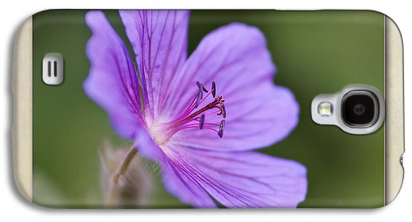 Stamen Digital Galaxy S4 Cases - Geranium maculatum Galaxy S4 Case by John Edwards