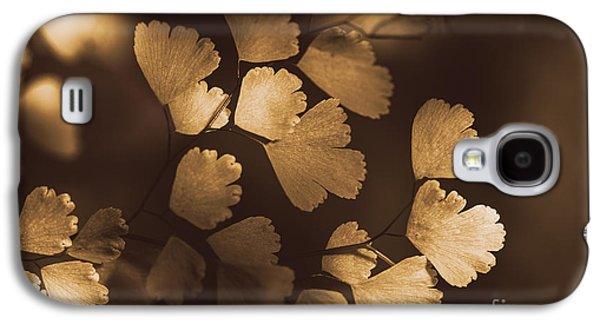 Concept Photographs Galaxy S4 Cases - Golden leaves hanging from a plant in autumn Galaxy S4 Case by Ryan Jorgensen