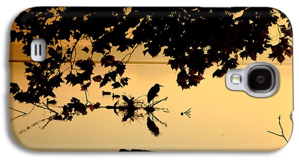 Landscape Acrylic Prints Galaxy S4 Cases - Golden Morning II Galaxy S4 Case by Steven Ainsworth