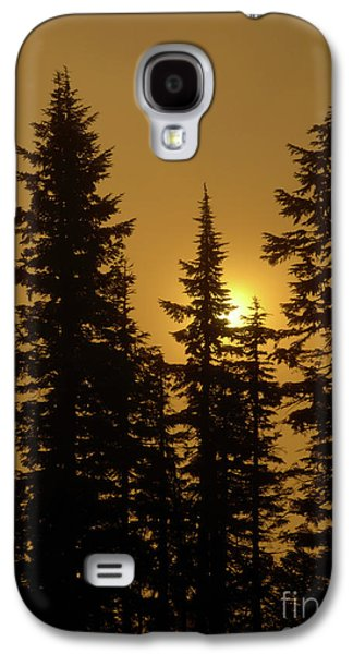 Fog Photographs Galaxy S4 Cases - Golden Morning Galaxy S4 Case by Mike Dawson