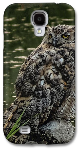Nature Center Galaxy S4 Cases - Great Horned Owl Galaxy S4 Case by Ernie Echols