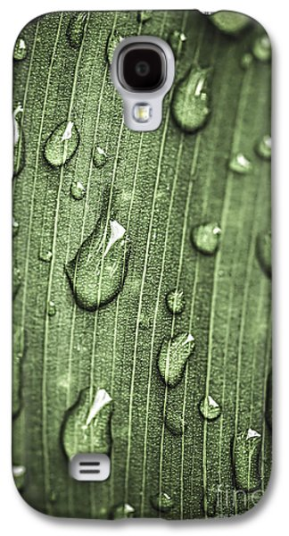 Plants Galaxy S4 Cases - Green leaf abstract with raindrops Galaxy S4 Case by Elena Elisseeva