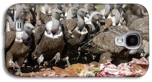 Griffon Vultures Feeding Galaxy S4 Case by Nicolas Reusens