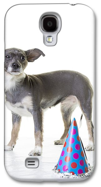 Cute Puppy Galaxy S4 Cases - Happy Birthday Galaxy S4 Case by Edward Fielding