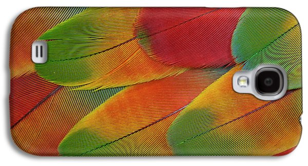 Harlequin Macaw Wing Feather Design Galaxy S4 Case by Darrell Gulin