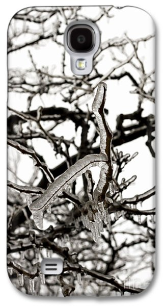 Nature Abstracts Galaxy S4 Cases - Ice on branches Galaxy S4 Case by Blink Images