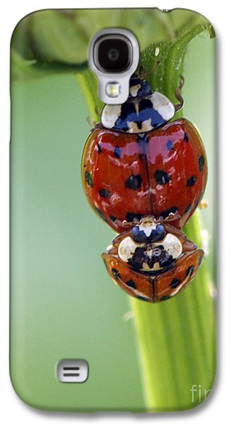 Ladybug Galaxy S4 Cases - It Takes Two Galaxy S4 Case by Sharon  Talson