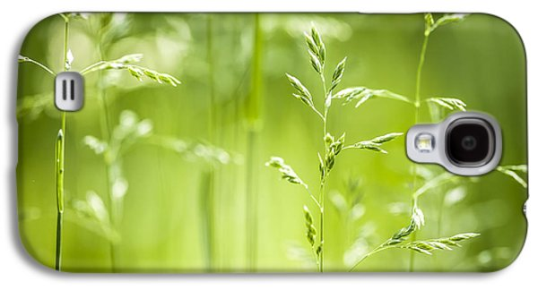 Green Galaxy S4 Cases - June green grass flowering Galaxy S4 Case by Elena Elisseeva