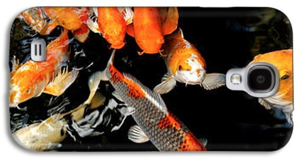 Schools Of Fish Galaxy S4 Cases - Koi Carp Swimming Underwater Galaxy S4 Case by Panoramic Images