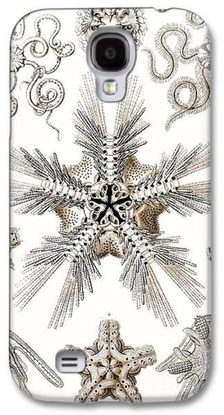 Nature Study Drawings Galaxy S4 Cases - Kunstformen der Natur Galaxy S4 Case by Ernst Haeckel