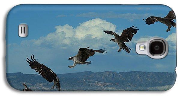 Landing Pattern Of The Osprey Galaxy S4 Case by Ernie Echols
