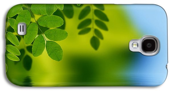 Leaf Drawings Galaxy S4 Cases - Leaves reflecting in water Galaxy S4 Case by Aged Pixel