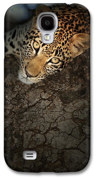 Headshot Galaxy S4 Cases - Leopard Portrait Galaxy S4 Case by Johan Swanepoel