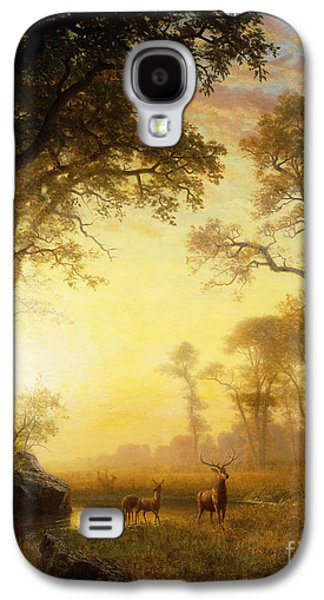 Best Sellers -  - Person Galaxy S4 Cases - Light in the Forest Galaxy S4 Case by Albert Bierstadt