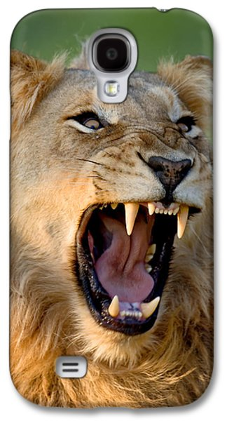 Teeth Galaxy S4 Cases - Lion Galaxy S4 Case by Johan Swanepoel