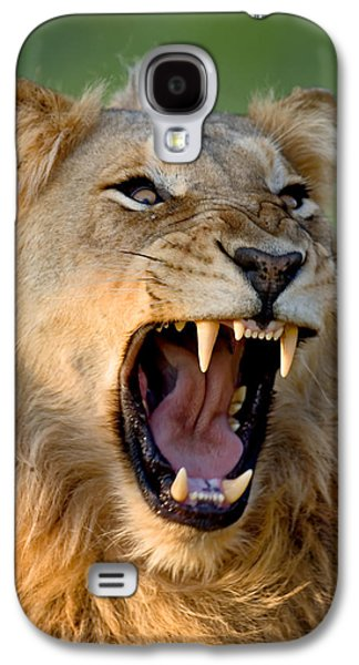 Fauna Photographs Galaxy S4 Cases - Lion Galaxy S4 Case by Johan Swanepoel