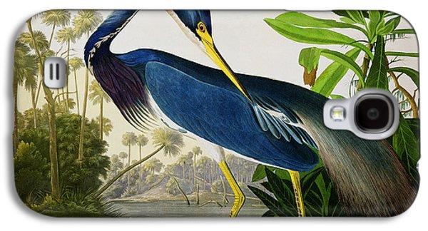 Wild Life Drawings Galaxy S4 Cases - Louisiana Heron Galaxy S4 Case by John James Audubon