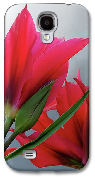 Botanical Galaxy S4 Cases - Love Galaxy S4 Case by Rona Black