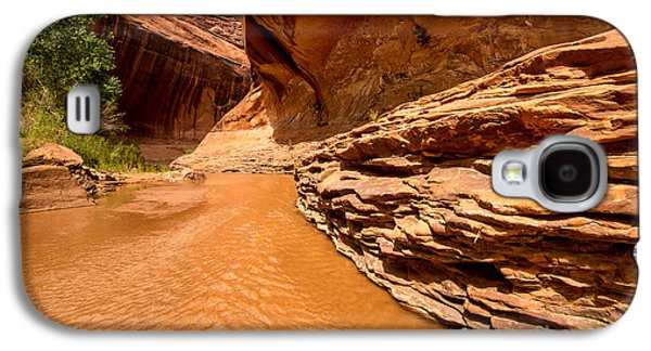 Holes In Sandstone Galaxy S4 Cases - Lower Coyote Gulch - Utah Galaxy S4 Case by Gary Whitton