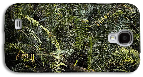 Loxahatchee Refuge-4 Galaxy S4 Case by Rudy Umans