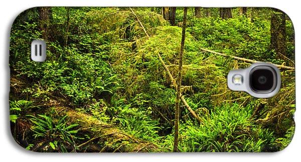 Green Foliage Galaxy S4 Cases - Lush temperate rainforest Galaxy S4 Case by Elena Elisseeva