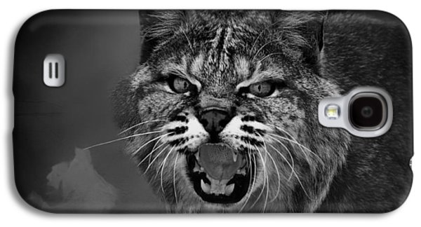 Growling Galaxy S4 Cases - Lynx - Up Close and Personal Galaxy S4 Case by Mountain Dreams