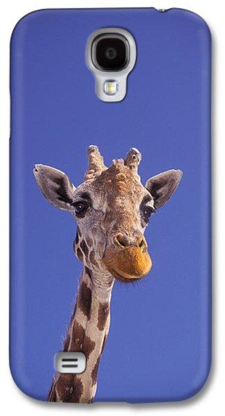 Concept Photographs Galaxy S4 Cases - Masai Giraffe, Serengeti, Africa Galaxy S4 Case by Thomas Kitchin & Victoria Hurst