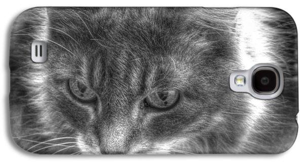 Fauna Pyrography Galaxy S4 Cases - My cat Galaxy S4 Case by Yury Bashkin