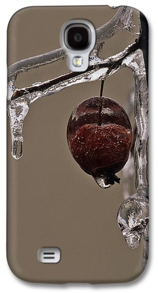 Nature's Candy Apple Galaxy S4 Case by Tony Beck