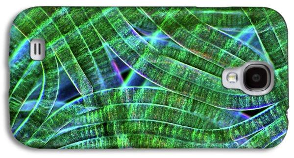 Oscillatoria Cyanobacteria Galaxy S4 Case by Marek Mis