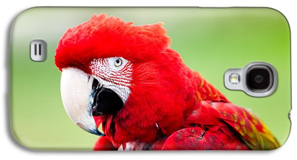 Parrot Galaxy S4 Case by Sebastian Musial