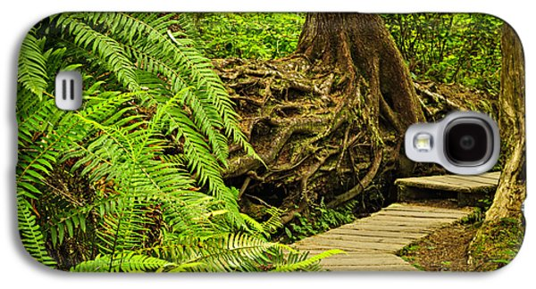 Vancouver Photographs Galaxy S4 Cases - Path in temperate rainforest Galaxy S4 Case by Elena Elisseeva