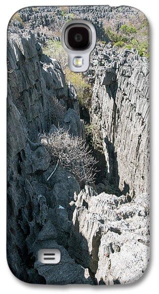 Plants Growing On Limestone Rocks Galaxy S4 Case by Dr P. Marazzi