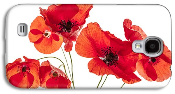 Cutouts Galaxy S4 Cases - Poppy flowers on white Galaxy S4 Case by Elena Elisseeva