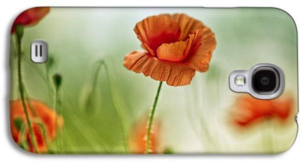 Soft Photographs Galaxy S4 Cases - Poppy Meadow Galaxy S4 Case by Nailia Schwarz