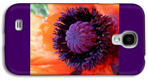 Red Flowers Galaxy S4 Cases - Poppy Galaxy S4 Case by Rona Black