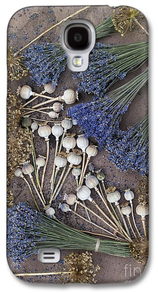Capsule Galaxy S4 Cases - Poppy seed pods and dried lavender Galaxy S4 Case by Tim Gainey