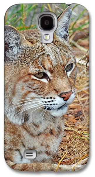Portrait Of A Bobcat Galaxy S4 Case by Jim Fitzpatrick