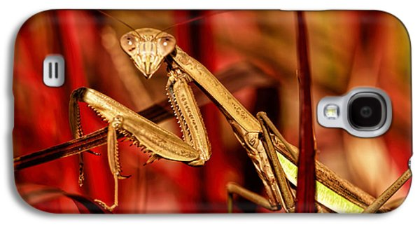 Butterfly Prey Galaxy S4 Cases - Preying Mantis  Galaxy S4 Case by Geraldine Scull
