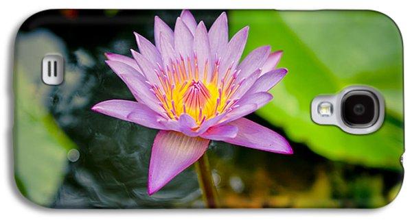 Close Focus Floral Galaxy S4 Cases - Purple lotus  Galaxy S4 Case by Raimond Klavins