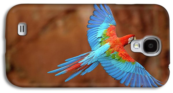 Red And Green Macaw Flying Galaxy S4 Case by Pete Oxford