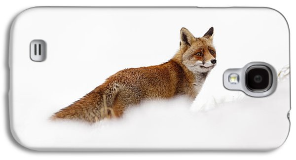 Hiding Galaxy S4 Cases - Red Fox in a White World Galaxy S4 Case by Roeselien Raimond