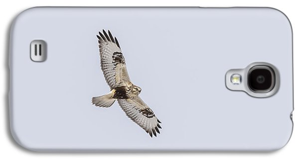 Morph Galaxy S4 Cases - Rough-legged Hawk In Flight Galaxy S4 Case by Thomas Young