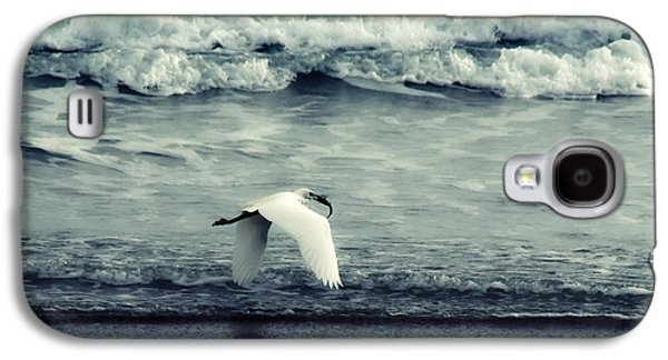 Action Photographs Galaxy S4 Cases - Seagull  Galaxy S4 Case by Stylianos Kleanthous